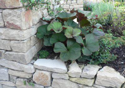 Naursteinmauer Bepflanzung