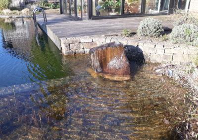 Schwimmteich Hausgarten Kleve