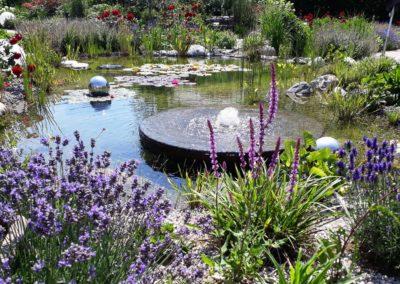 Teich Hausgarten Kalkar